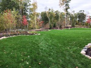 newly installed backyard with sod, boulders and muclh