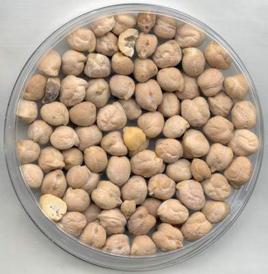 close up shot of chickpeas in a bowl