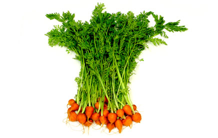 round baby carrots