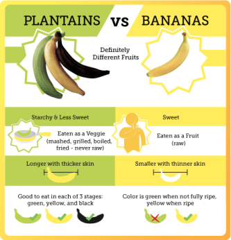 plantains vs bananas