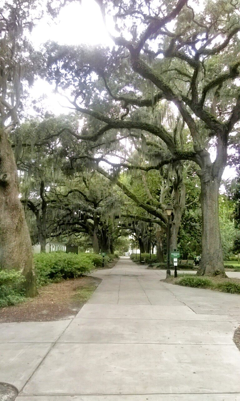 C360_2015-08-24-17-49-10-741 A Romantic Getaway: Savannah