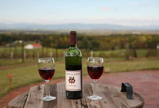 10 Leave It All Behind: How to Experience Tuscan Wines in the Heart of North Carolina