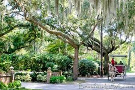 40f34ef8d604c001d0f9de335a099308 Black Southern Belle Travel: 11 Things to Do in Beaufort, SC