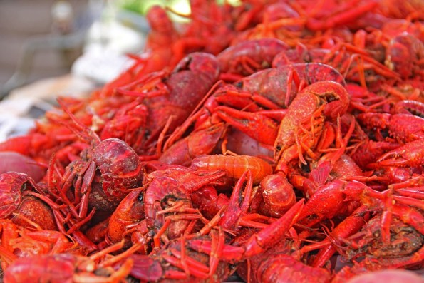 Louisiana-Mud-Bugs-Crawfish-South-Food-New-Orleans-169694-595x397 Black Southern Belle Travel: Three South Louisiana Treasures