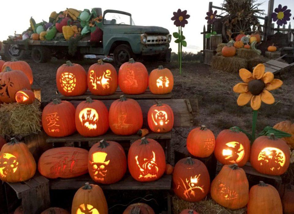 Jack-o-lanterns-at-Shady-Brook-Farm--960x699 Cozy Fall Bachelorette Party Destinations - Bucks County, PA