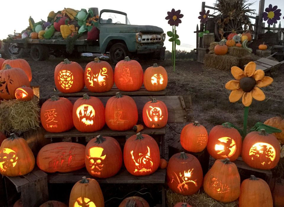 Jack-o-lanterns-at-Shady-Brook-Farm--960x699 Cozy Fall Bachelorette Party Destinations - Bucks County, PA