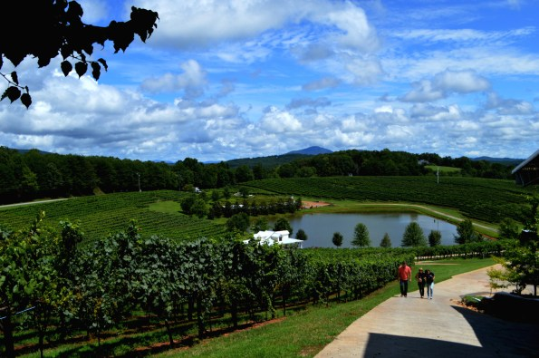Frogtownvineyards-595x395 Wineries in Dahlonega, GA That You Must Try