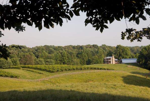 Cavender-Creek-Vineyards-Winery-credit-Cottrell-Photography-Log-cabin-over-vineyard-595x402 Wineries in Dahlonega, GA That You Must Try