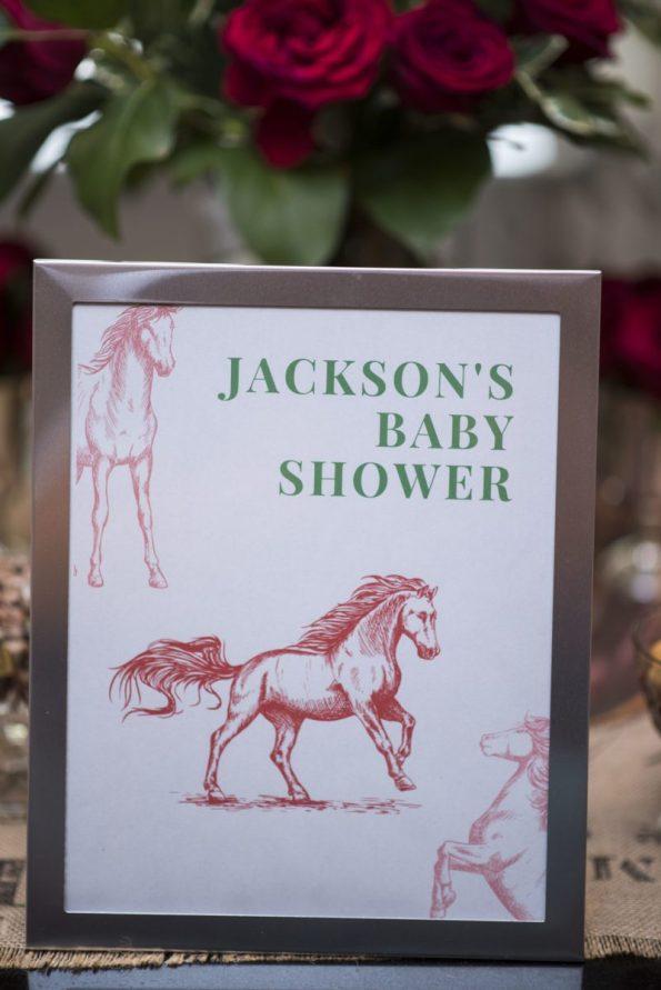 DSC_2240-595x891 Kentucky Derby Baby Shower Style