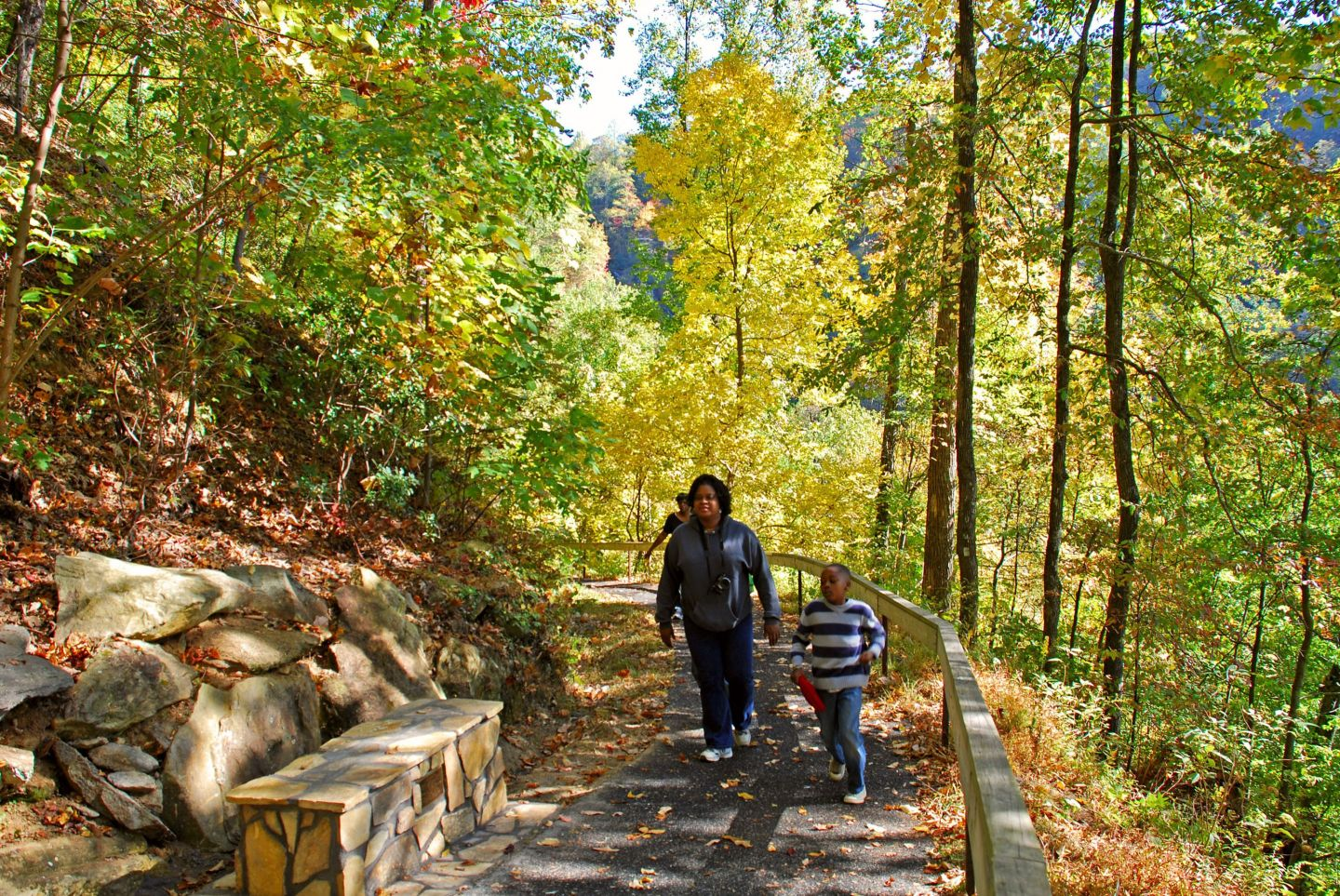 BSB Travel:  Top Ten Georgia State Parks for Fall Color