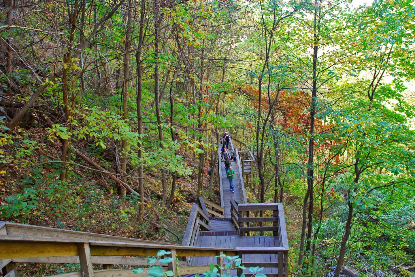 Horizontal-Staircase_Amicalola-Falls BSB Travel:  Top Ten Georgia State Parks for Fall Color