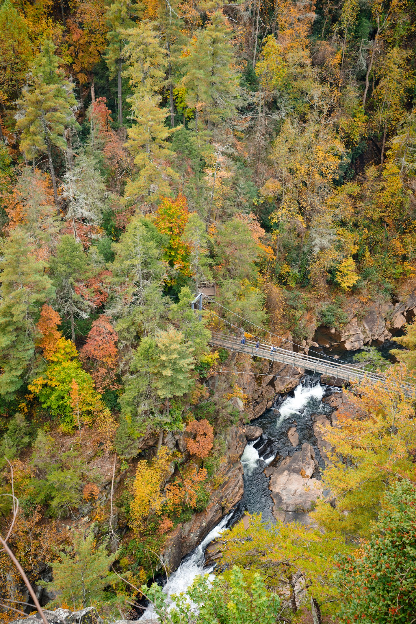 Tallulah-Gorge-looking-down-fall BSB Travel:  Top Ten Georgia State Parks for Fall Color