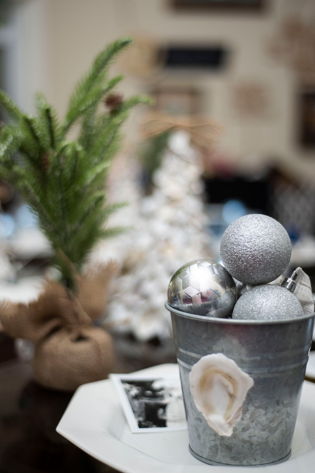 DSC_2501 Lowcountry Christmas: Oyster and Gullah Inspired Decor