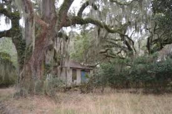 download-1 Historic African American Townships in the South to Visit
