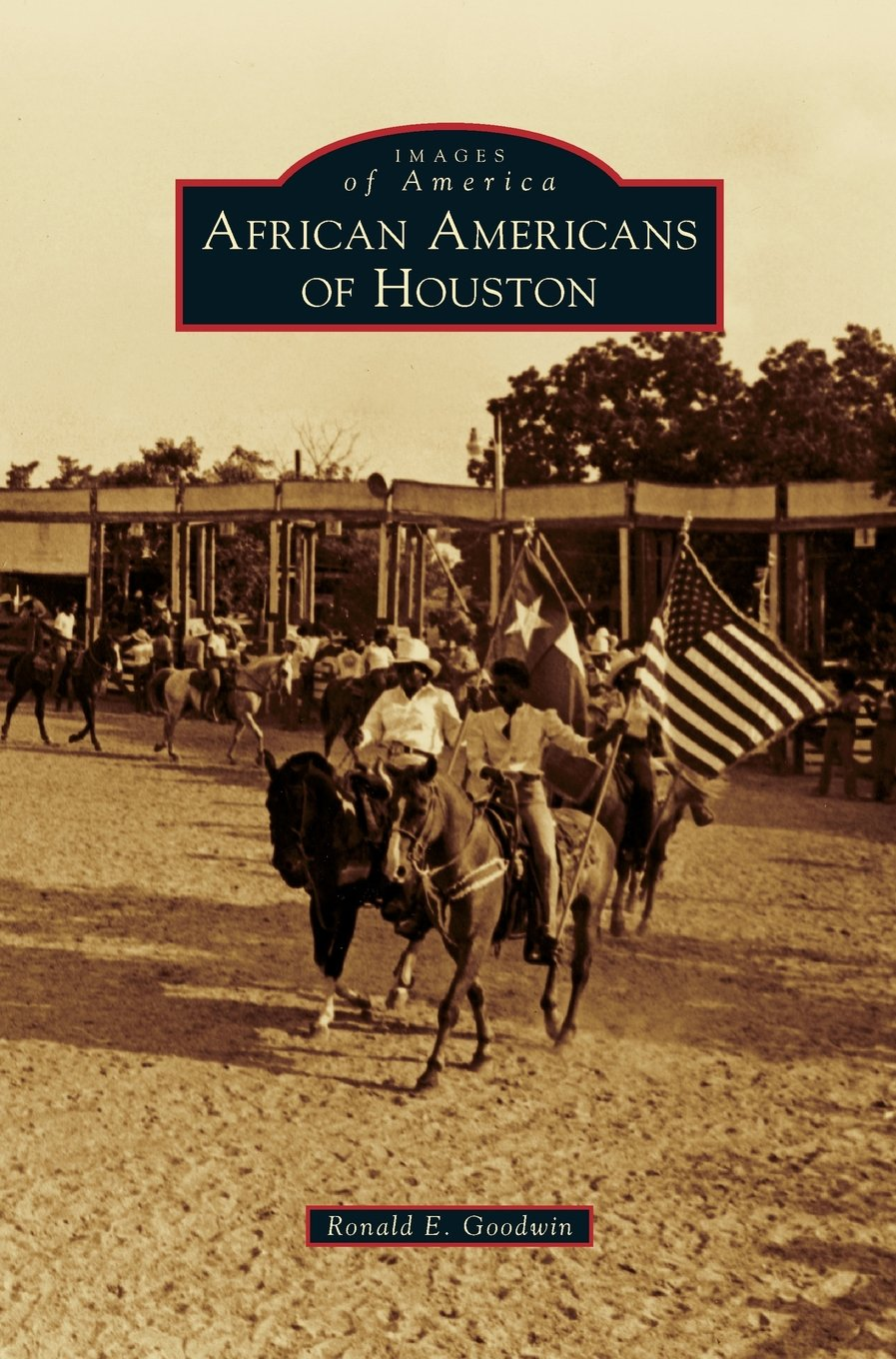 71k-FJyHWAL Houston African American History Books to Collect