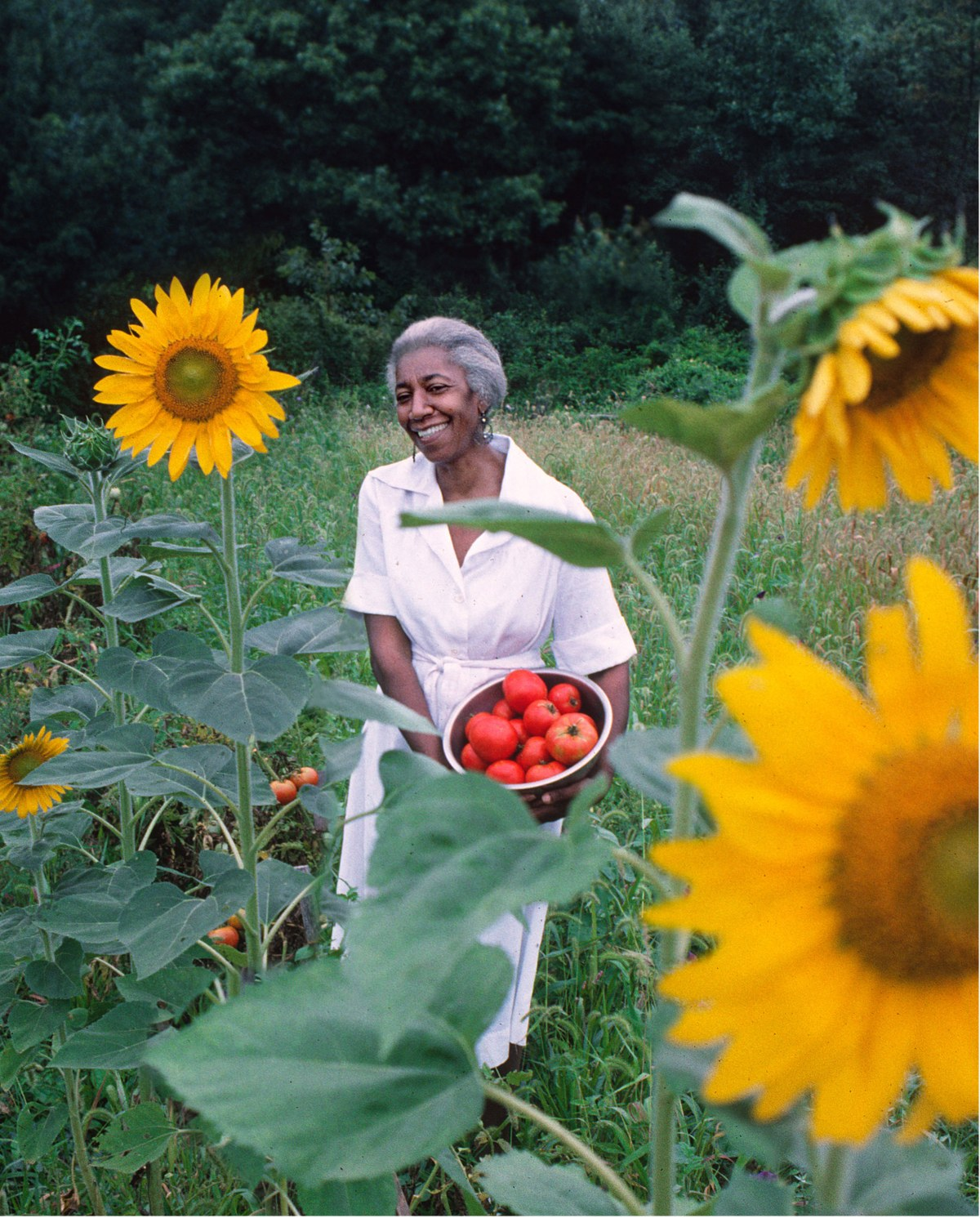 john-hill-edna-lewis 8 Southern Chefs and Culinarians Sustaining the Legacy of Edna Lewis