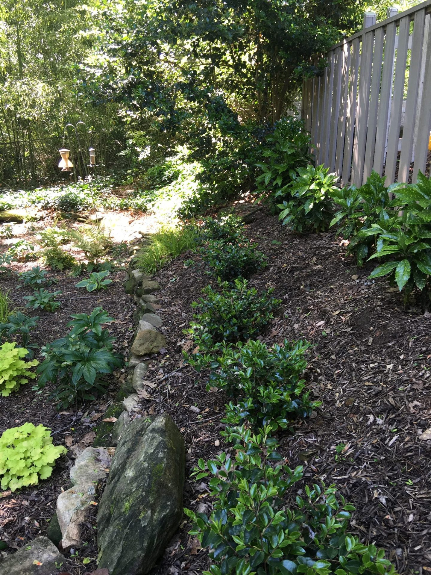 IMG_1422-1440x1920 African American Landscape Architect Gives 3 Tips to Working With An Expert to Upgrade Your Yard