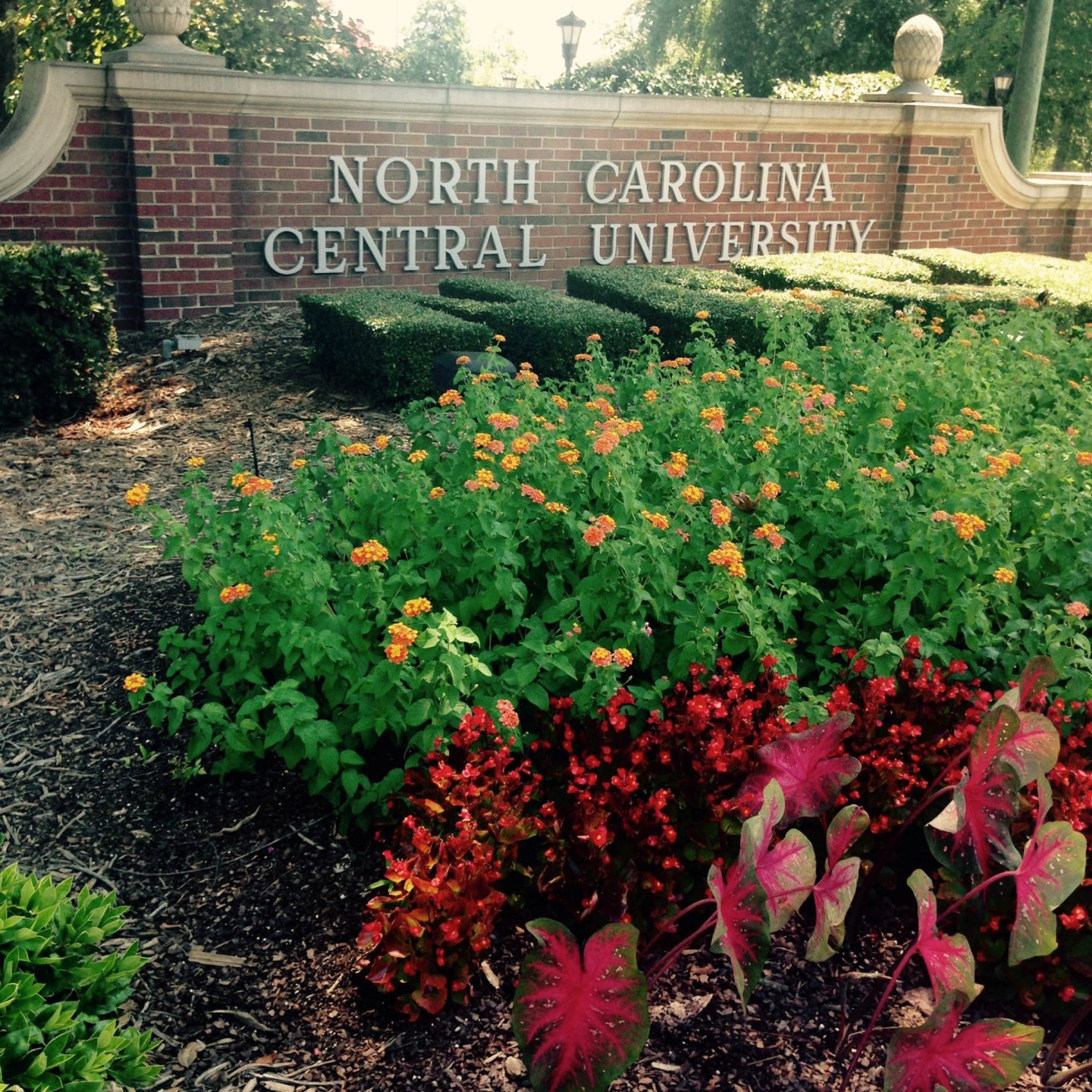 CITY08_NC-Central-University-sign_DiscoverDurham2015 Durham, NC Travel Guide: Black Southern Belle Edition