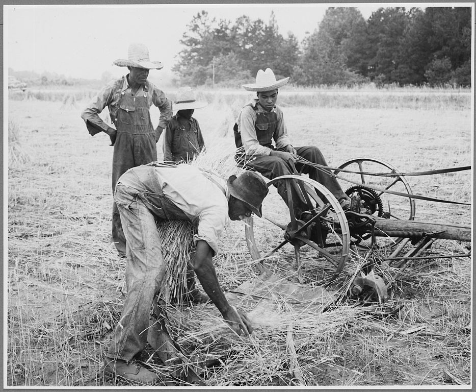 934px-Harmony_Community_Putnam_County_Georgia...._Binders_are_not_uncommon_on_large_farms_but_those_who_._._._-_NARA_-_521328 HBCU Heritage: USDA Scholarship Opportunities