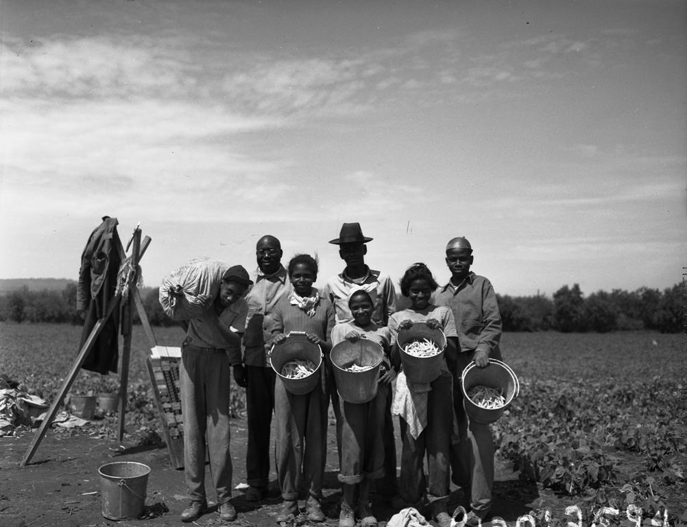 African_American_group_in_bean_field_1947_5836875752 HBCU Heritage: USDA Scholarship Opportunities