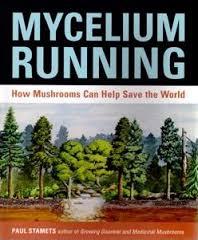 Hope for Earth:mushrooms