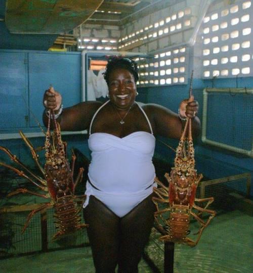 Lobster Alive, Bay St, Bridgetown, Barbados