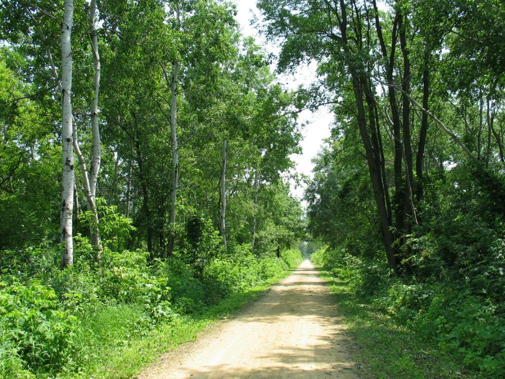 A Scene On The Sugar River Trail