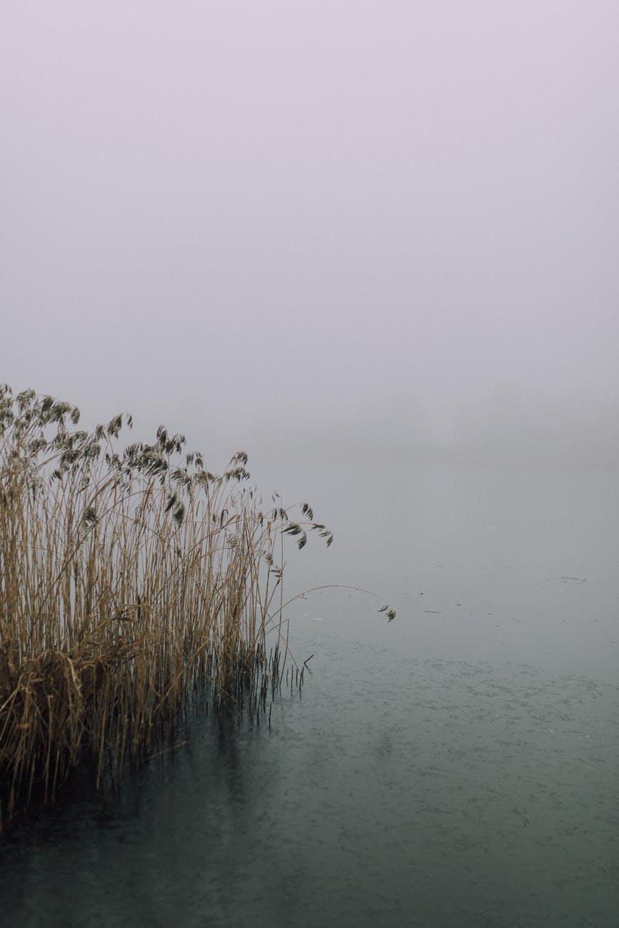 cold sea dawn landscape