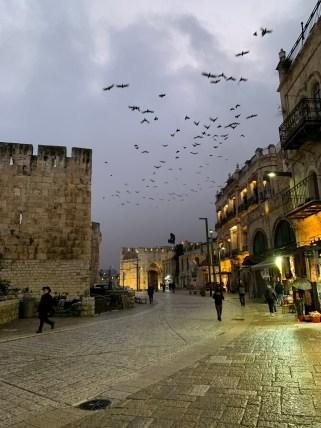 Blick von der Altstadt Richtung Ausgang der Altstadt beim Jaffator. Persönlich finde ich, dass dies eines der gelungensten Bilder ist.
