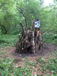 Completed stumpery