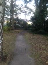 Path facing north
