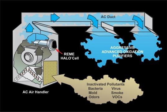 Diagram Of Germs Air Treatment