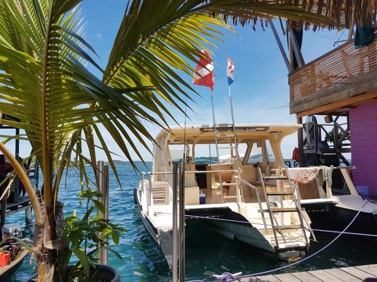 Tauchen mit La Buga auf Bocas del Toro