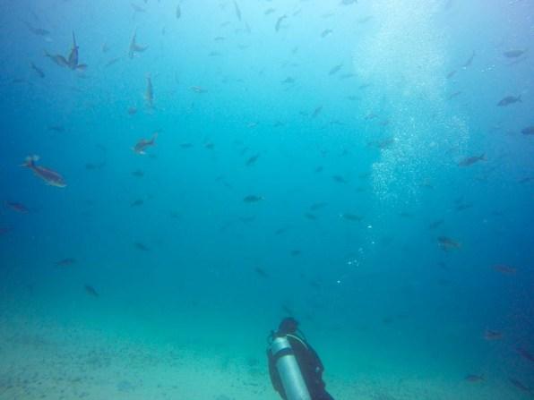 Blick in die Weite des Ozeans