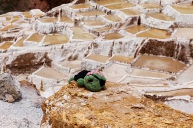 Peru-Heiliges-Tal-Maras_6