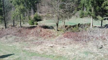 Ruinen Langenthaler Hof 2
