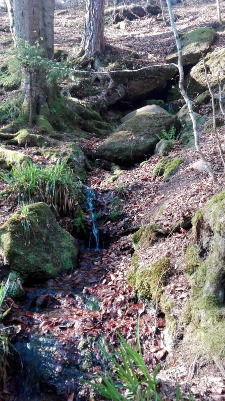 Ruinen Langenthaler Hof -Quelle 2