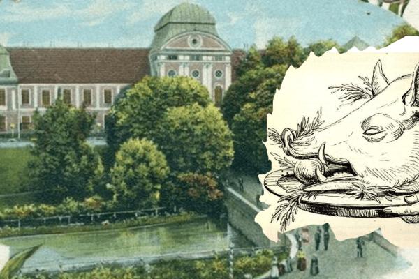 Od teleće koljenice do čobanaca od veprovine: grofovima Pejačević večera je stizala mini željeznicom koja je prolazila kroz podzemni tunel