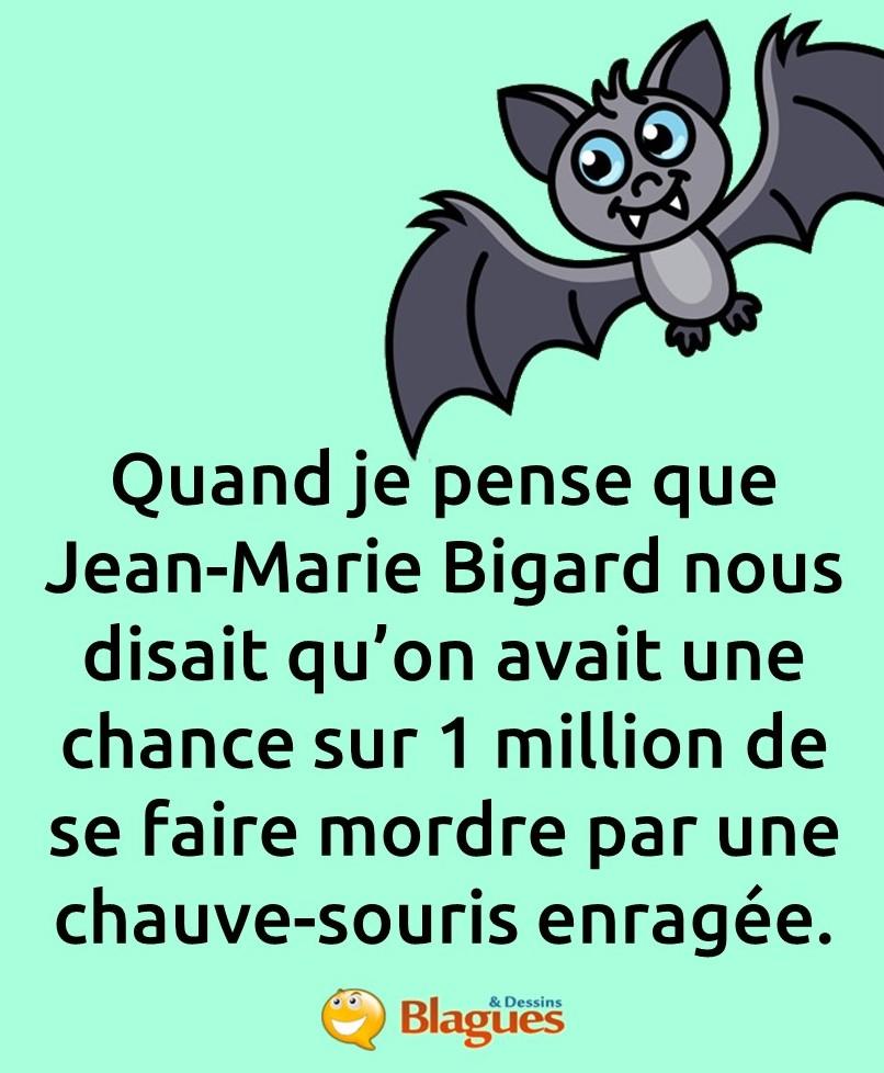 La Chauve Souris Bigard : chauve, souris, bigard, Blague, Chauve-souris, Enragée, Blagues, Dessins