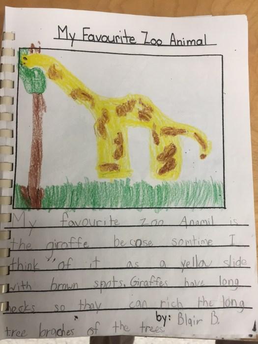 blog giraffe morrish.jpg