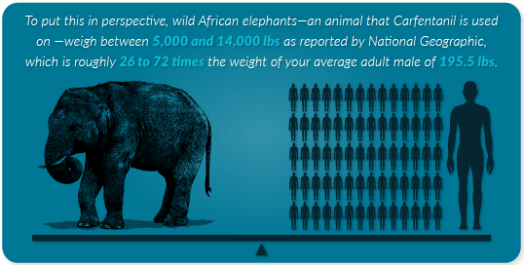 Carfentanil-Laced-Heroin-Abuse-And-Addiction_elephant.png