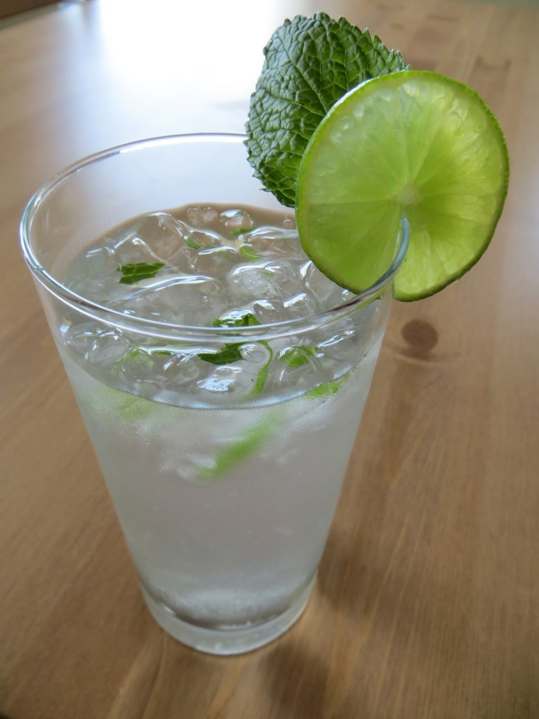 Delicious Refreshing Summer Mint Lime Water Recipe   Blair Blogs