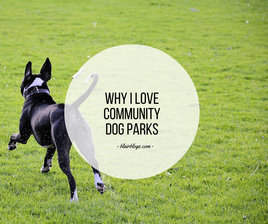 Why I Love Community Dog Parks | Blairblogs.com