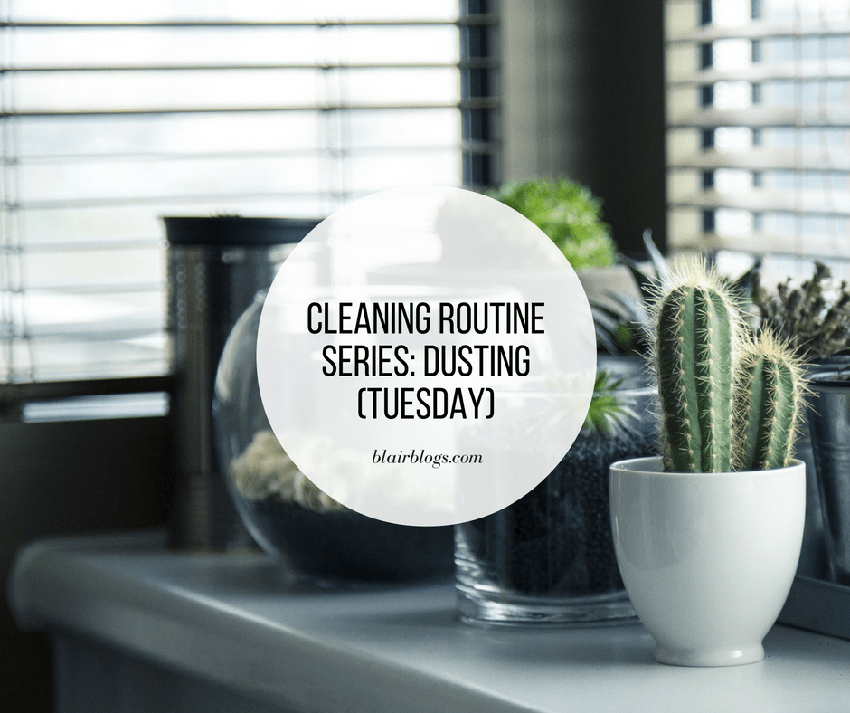 Cleaning Routine Series: Dusting (Tuesday)