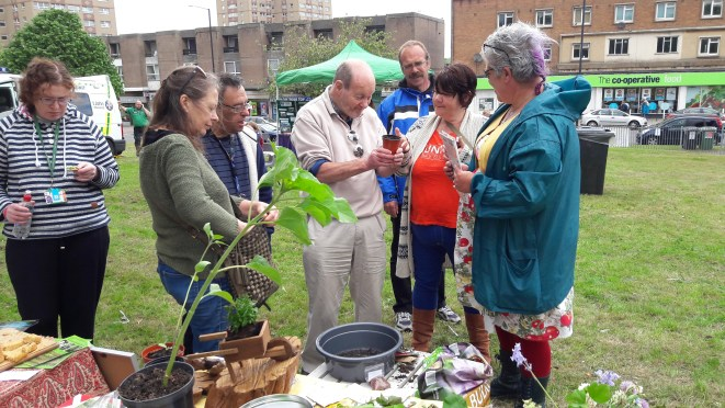 Blaise Garden adds to Feel Good Day, 13th May 2017