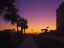 Coastal Tropical Landscape Ocean Sunrise