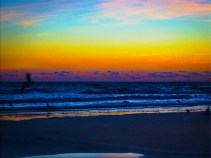 New Photo Art Titled Birds fishing at Dawn on the Beach