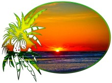 New Art Titled: Sunrise over Atlantic Ocean Palms & Tropical Plants IV. Photo art digital edit of the sun rising over the Atlantic Ocean the waves on the beach surrounded by oval with tropical plants.