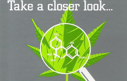 a closer look at medical marijuana