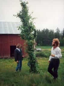 1993 (19)